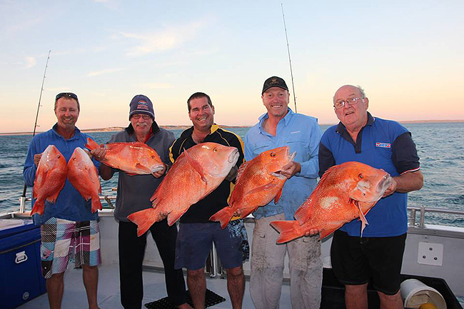 Shark Bay Fishing Snapper