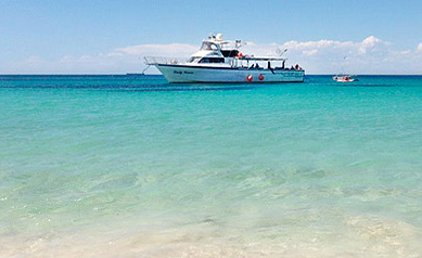 Rottnest Island and Carnac Island Boat Charters